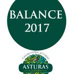 Balance 2017 - Cluster Asturas