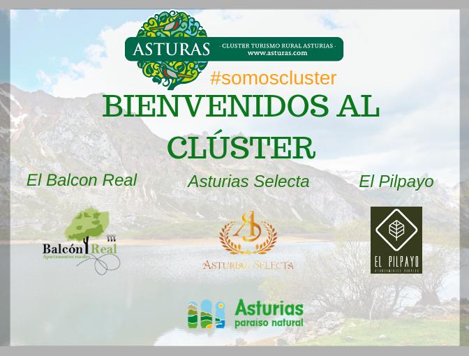 Nuevos socios del Clúster: Balcón Real, Asturias Selecta y El Pilpayu